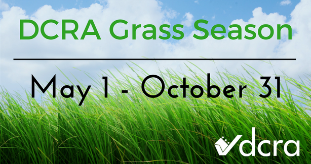 Grass Season Web Graphic (8)